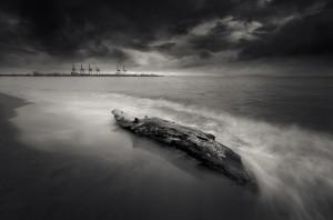 Driftwood and a shipyard